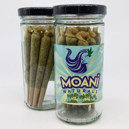 MOANI Tangie Pre Roll Pack 14g